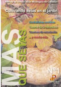 Revista MAS QUE SETAS _ 1